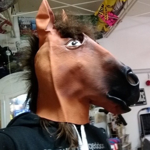 Other - Horse Head costume